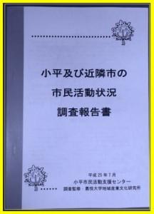 市民活動状況調査冊子